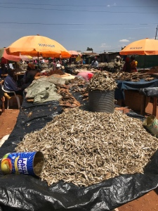 Dried fish from the Victoria lake